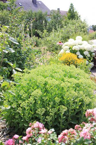 Gartenanlage_12