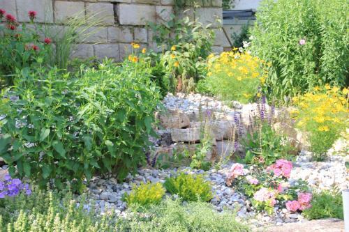 Gartenanlage_17