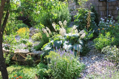 Gartenanlage_18