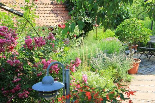 Gartenanlage_16