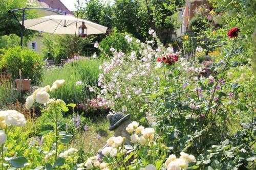 Gartenanlage_20