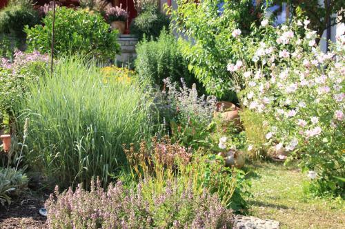Gartenanlage_19